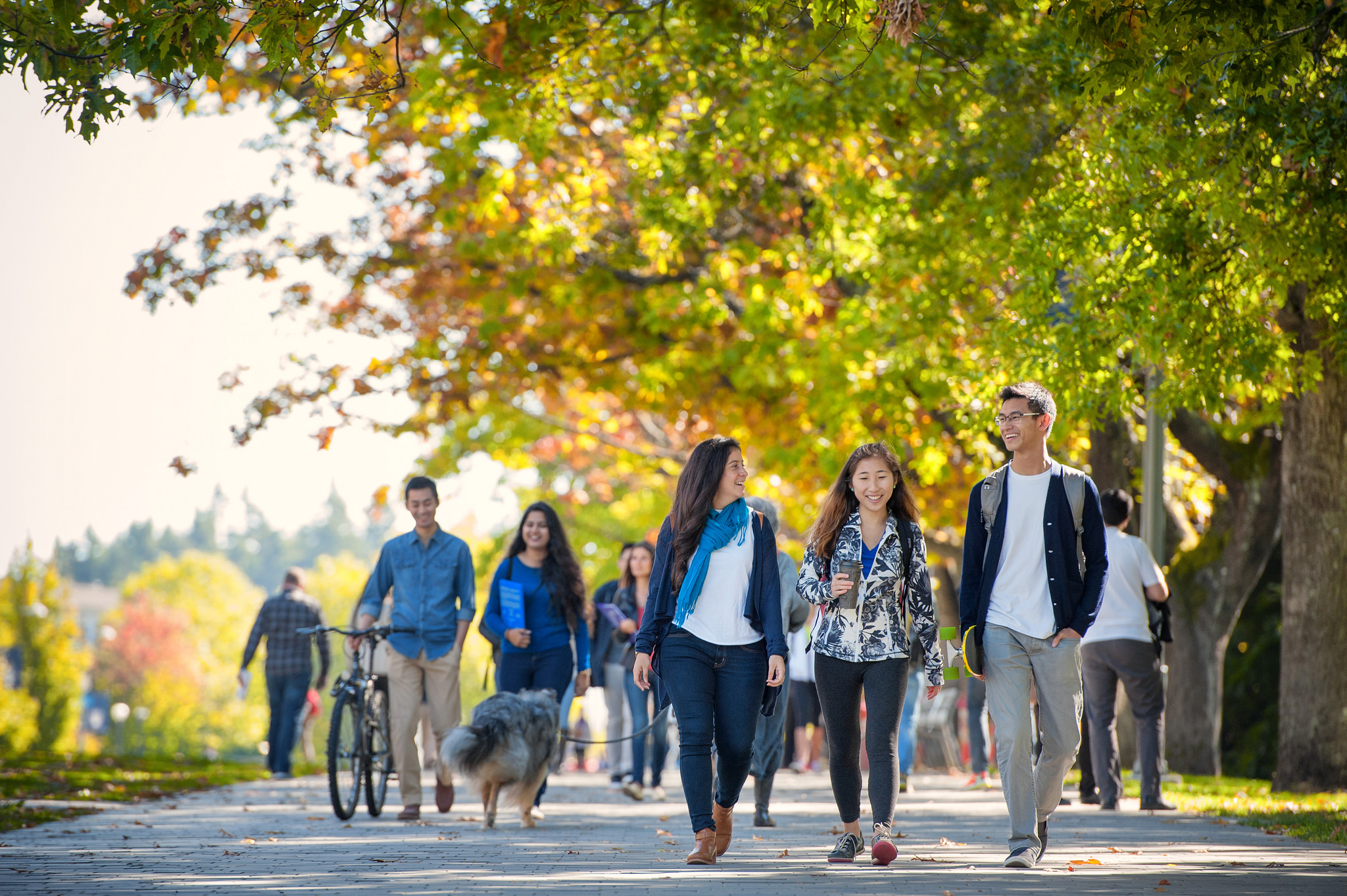 UBC's admissions process is changing in 2019