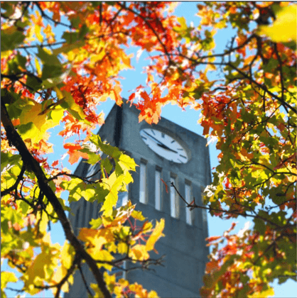 @youbcpic: Look up. Way up. The Ladner Clock Tower is an iconic campus landmark, known to many graduating classes of students. #UBC